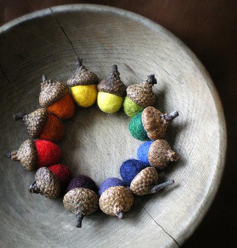 acorn-inclusion